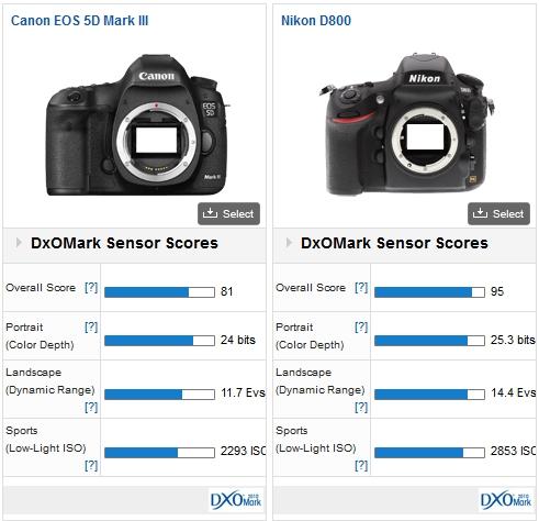 CS_canon_5D-MK-III_vs_nikon_D800